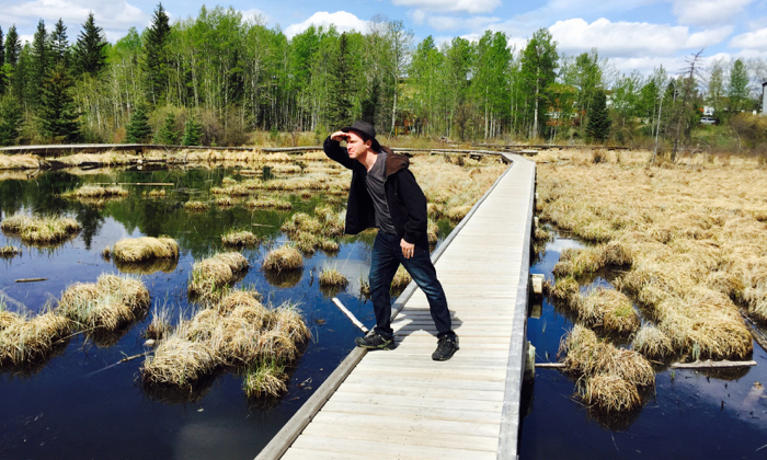 On the lookout for beavers in Hinton